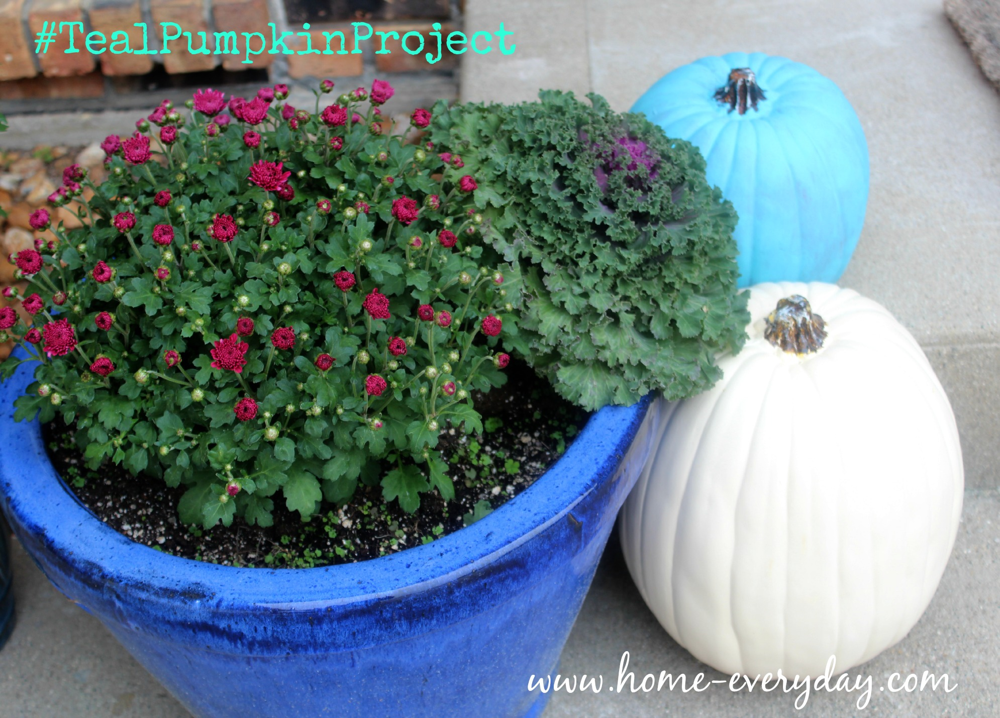 Teal Pumpkin Project 15-3