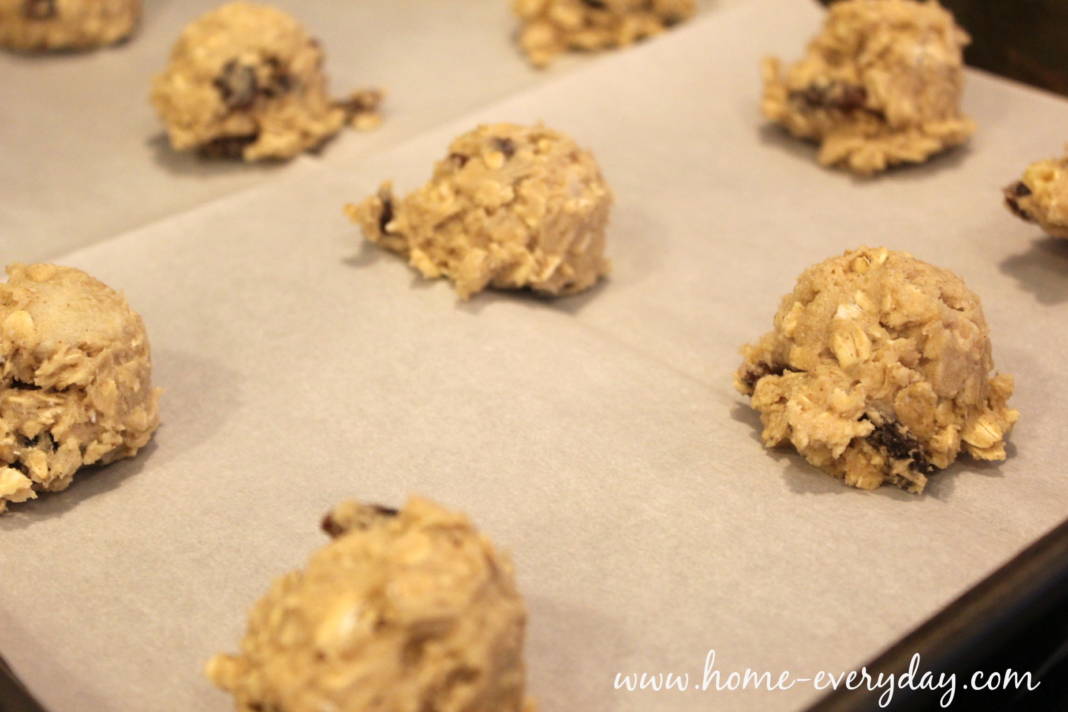 Oatmeal Raisin Cookies 13