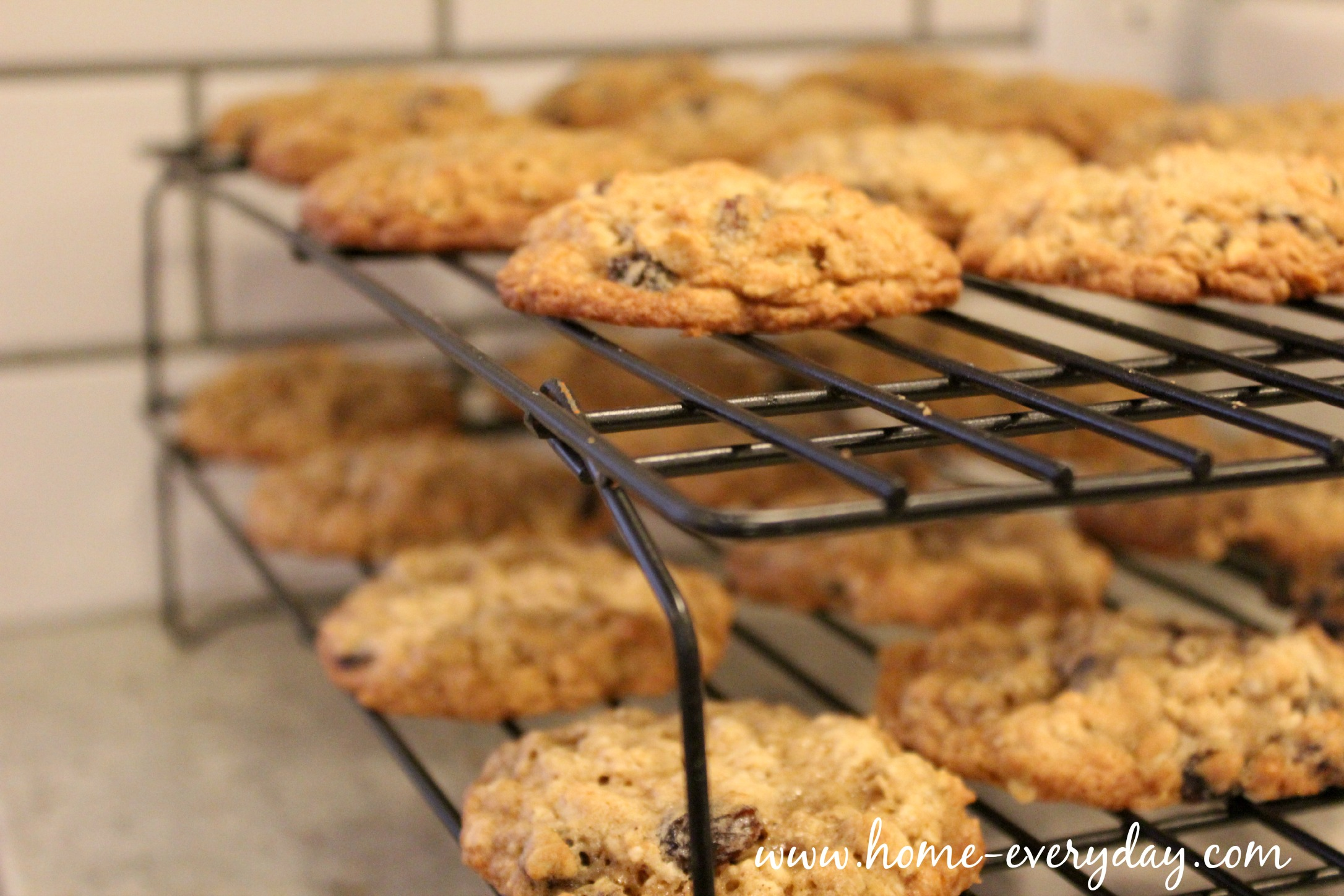 Oatmeal Raisin Cookies 15